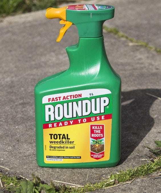 Monsanto Roundup Weed Killer Caused Cancer, Jury Finds